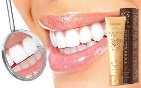 Denta Seal funciona, composicion, ingredientes